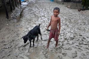 A boy with his goat at Shyamnagar in Satkhira.
