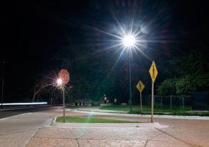 Road crossing. Paseo de los Viveros. Ixtapa.