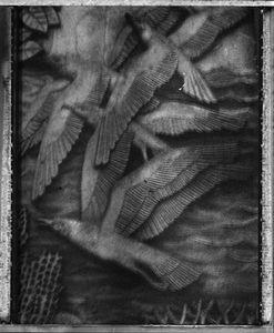Les oiseaux de la porte dorée © Sarah Moon