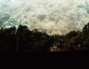 Dafna Talmor - Constructed Landscapes | LensCulture