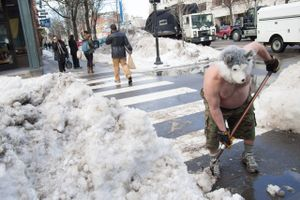 Untitled (Dog shoveling snow outside the Middle East, from the Central Square series ), 2013