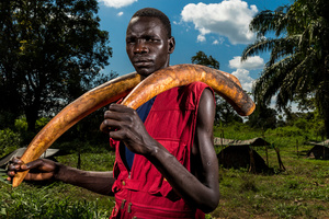 A Lord's Resistance Army (LRA) fighter holds two ivory tusks. Ivory is a means of financing the LRA and is used for both food and weapon supplies. Near, Sudan, 17 November 2014.