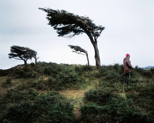 Pissing Against the Prevailing Wind