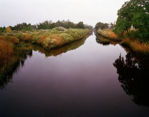 Canal in Fog, Near Highway 17               © Eliot Dudik