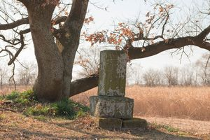 Old tombstone is lonely.
