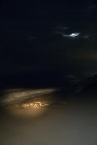 Full Moon, High Tide