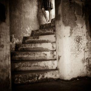 The Murmur of a Dream  © Lori Vrba