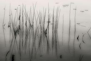 Upper Hadlock Pond 55, © Alan Henriksen
