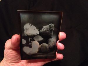 Kissing Bears © Blake Wylie  -   Quarter Plate Daguerreotype experiment