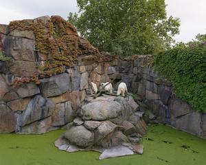 Zoo Berlin, Deutschland (2014)