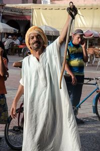 The Snake Charmer. Taroudent, Morocco