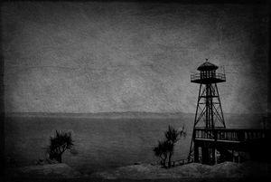 Somewhere... on Alcatraz, CA