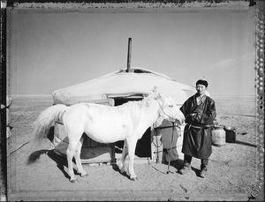 Mongolian Fast Horse (Nomadic Mongolia #41), 2004. © Elaine Ling