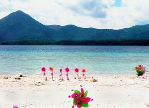 Paradise 1© Takahiro Kaneyama