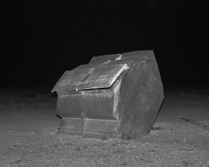 Dumpster, McFarlane Station, Tambo, QLD Australia, 2015.