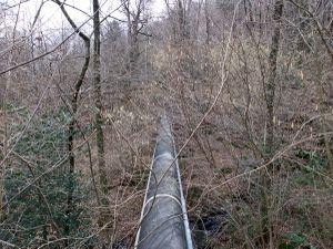 black tube II