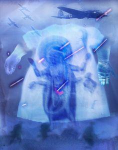 Robotic Kali Makes the Cuts