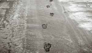My Child's Footprints