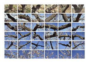 Fraction & Everything © Ferran Garcia Sevilla, Raina Lupa Editions