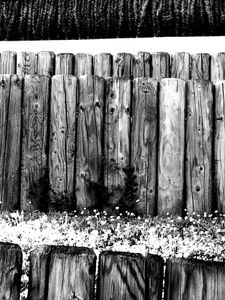 Wooden Posts and Grass 3