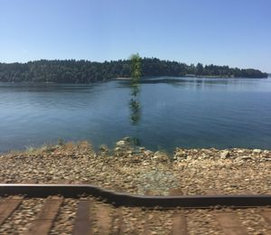 Rail, Tree, Water, Sky