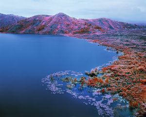 Beaucoups of Blues, Eastern Congo, 2012 © Richard Mosse. Courtesy of the artist and Jack Shainman Gallery.