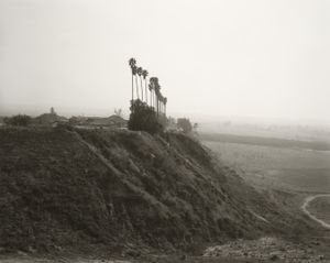 New development on a former citrus-growing estate, Highland, California © Robert Adams