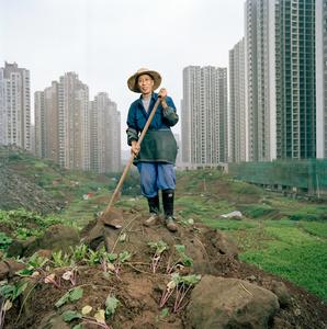 Ren Yidi - Urban Farmer