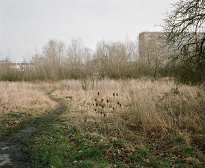"""aus der Serie """"Utopia"""" / Halle-Neustadt#1"""