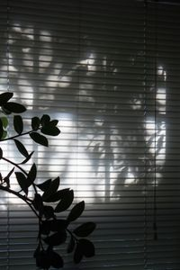 Window Garden (2)