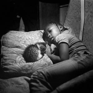 Cat Nap, Duncan, MS, 2012