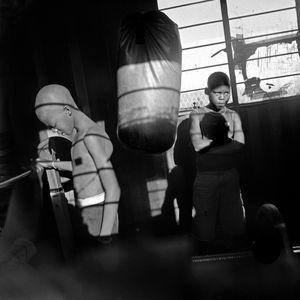 Shadow Boxing, Malmesbury.