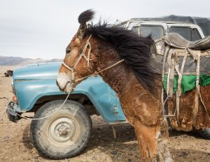 """Altantsögts, Mongolia, 2015. From the series """"The Outsider."""""""