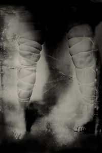 "That Which Was Inanimate. 10""x14"" Tintype. From the series ""Soma"" © Michelle Rogers Pritzl"