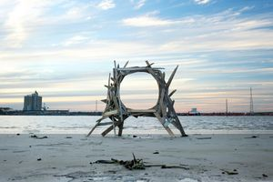 Wood Debris   © Jeremy Underwood