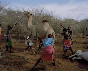 untitled, westgate community conservancy, northern kenya-from the series 'with butterflies and warriors'-David Chancellor