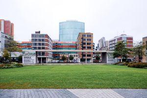 Lost in Rotterdam