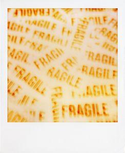 Fragile © Mimi Youn
