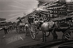 Tomtom (horse cart). Gulistan, 2003. © Munem Wasif