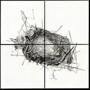 """Nest V, 2011                                              32""""h x 32""""w x 1.5""""d                                         archival pigment prints & encaustic  © Christa Bowden"""