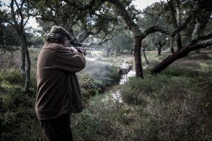 António Manuel Barata shooting a deer. © Antonio Pedrosa
