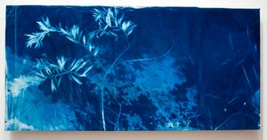"The Sisters: Oleander, Cyanotype, Recycled fabric, 48""x 60"", © Alex Emmons"