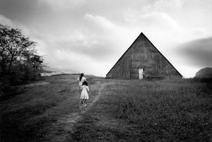 Tobacco barn © Susan S. Bank