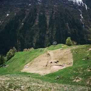 Ces, Alps, Switzerland, 2013 © Antoine Bruy