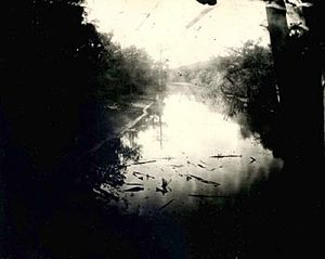 Untitled, 1998, (Deep South #9). © Sally Mann
