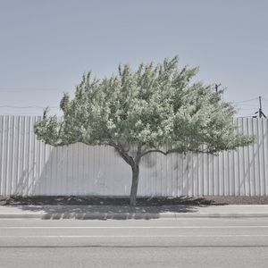 URBAN SPRAWL-WALL