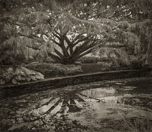 "Dye Pool, The Courts, 18.5x16"" Platinum Palladium © Beth Dow"