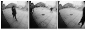 Hide/ Triptych