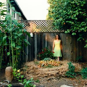 America in the Garden, Healdsburg, California 2009