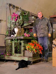 Grandpa and Barncats